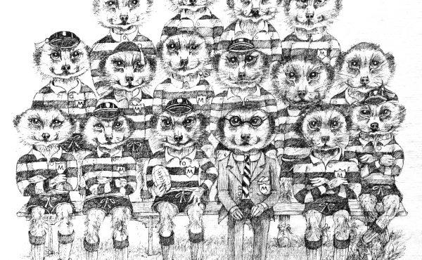 Rugby Team Meerkats